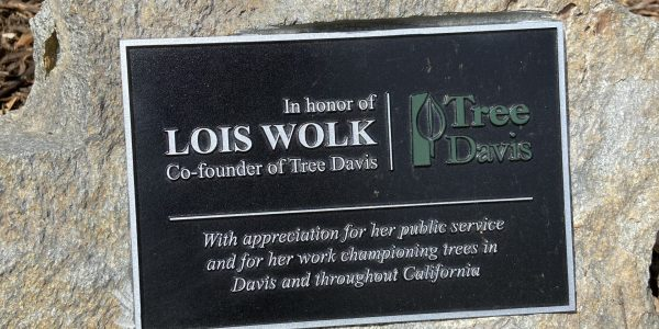 Plaque for Lois Wolk, co-founder of Tree Davis and former Mayor and State Senator.