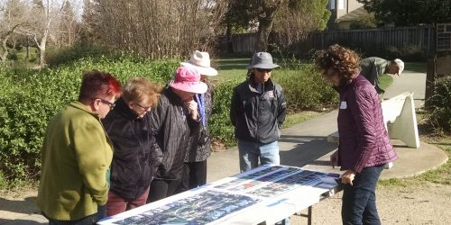Emily Griswold, Tree Davis Board Member, discussing plans for Wolk Grove during a community outreach event.