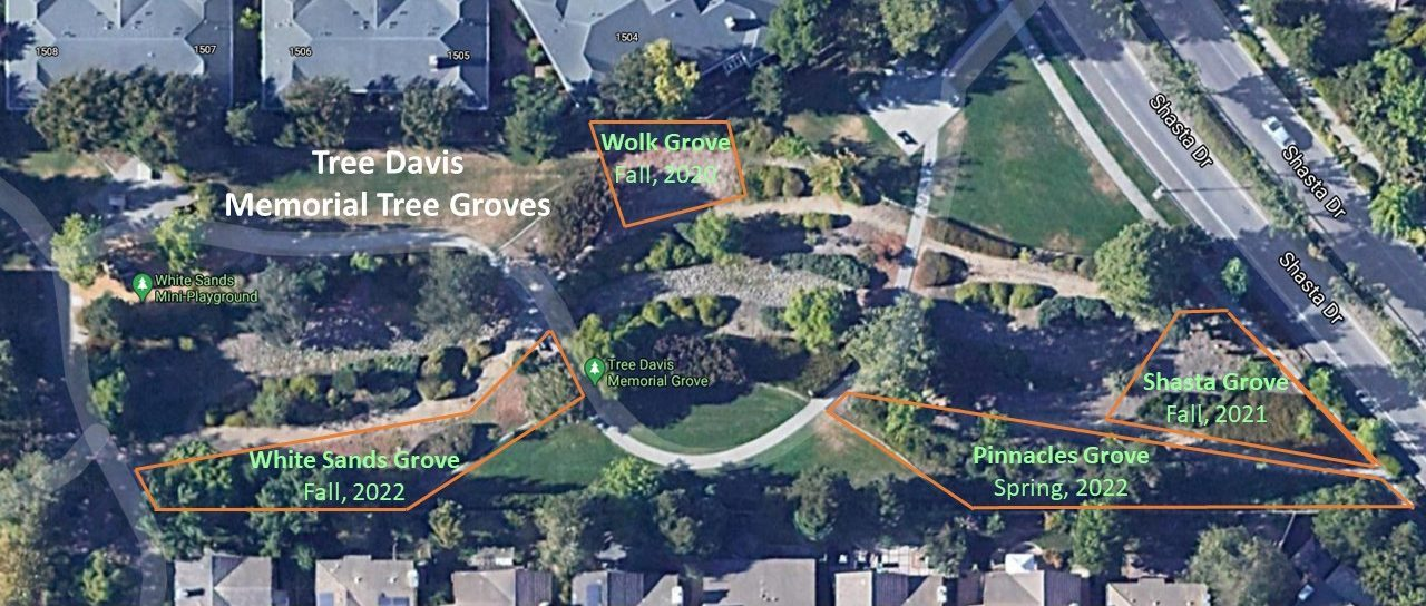 Phased Development of 'Climate Ready Landscapes' in mini-groves located inside Tree Davis Memorial Grove.
